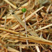 藁の中に混在している針